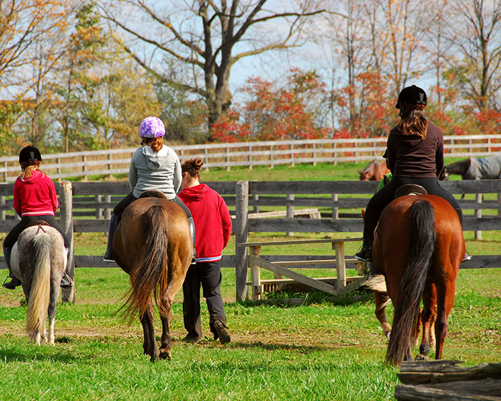 Equine Therapy & Counseling - Brighton & Plymouth MI - horse-riding