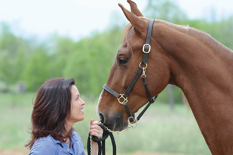 Equine Therapy & Counseling - Brighton & Plymouth MI - nan_and_chase